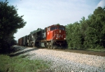 CN 5609
